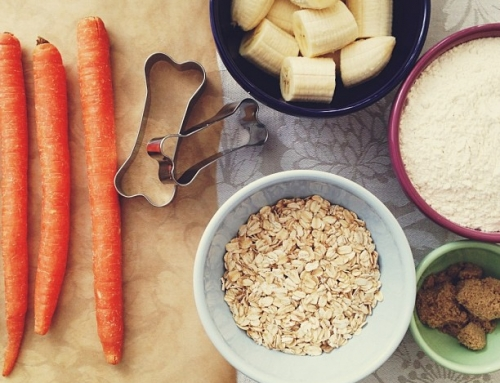 Five Homemade Treats For Your Pooch